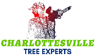 AskTwena online directory Tree Experts of Charlottesville in Charlottesville