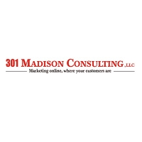 301 Madison Consulting LLC