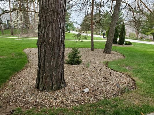 Benefits of Professional Landscape Maintenance for Your Home